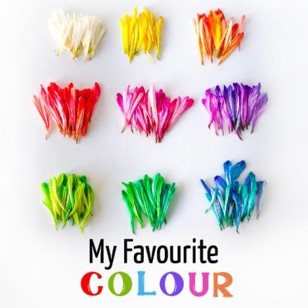 favourite colour